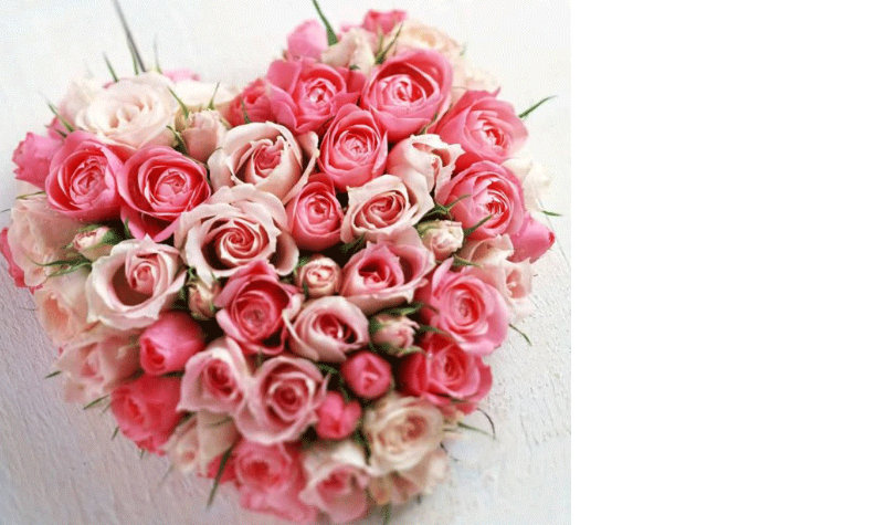 valentine's day flowers next day delivery ilford london essex florists, Ideas