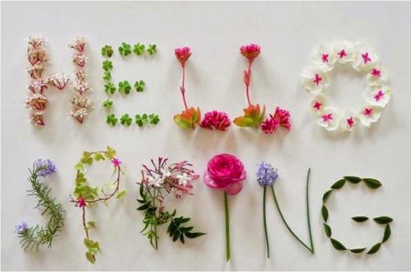 Spring has Sprung a...